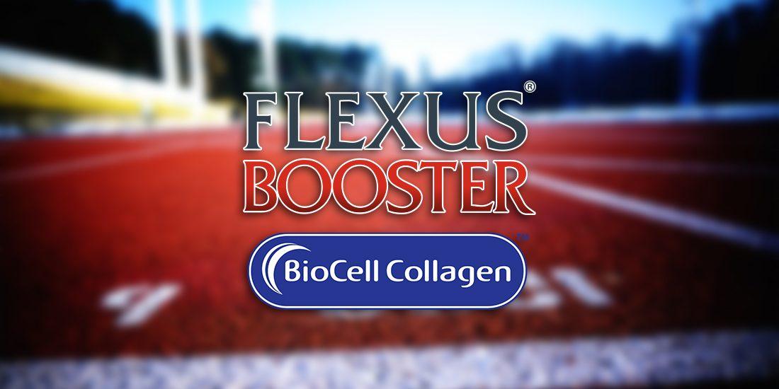 Уникалните съставки и допълнителни ползи на Flexus® Booster – част 1